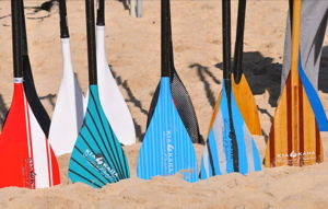 Paddle Colors